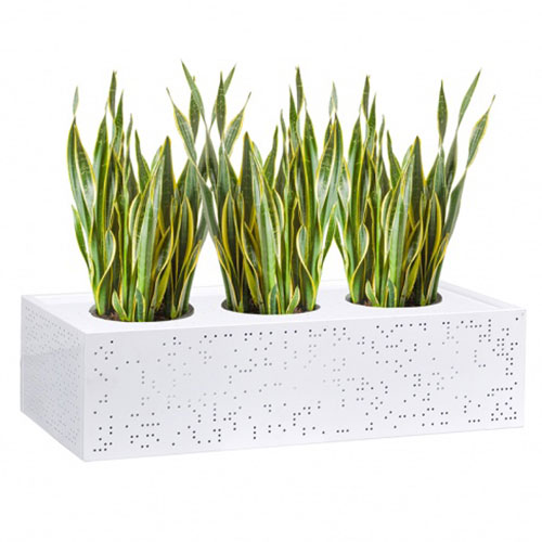 Lunar Metal Planter Box