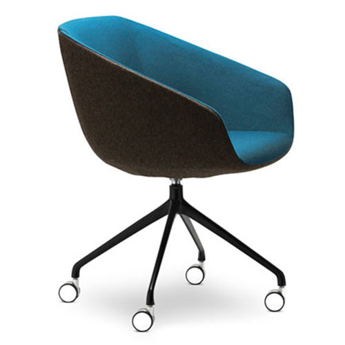 Delphi Meeting Chair