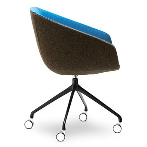Delphi Meeting Chair